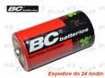Bateria R20
