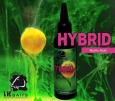 Atraktor LK Baits Hybrid Activ - Wild Strawberry