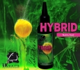 Atraktor LK Baits Hybrid Activ - Mussel